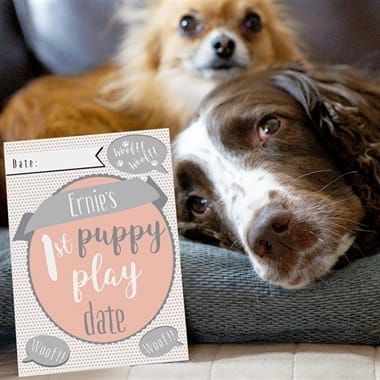 Personalised Puppy Cards For Milestone Moments