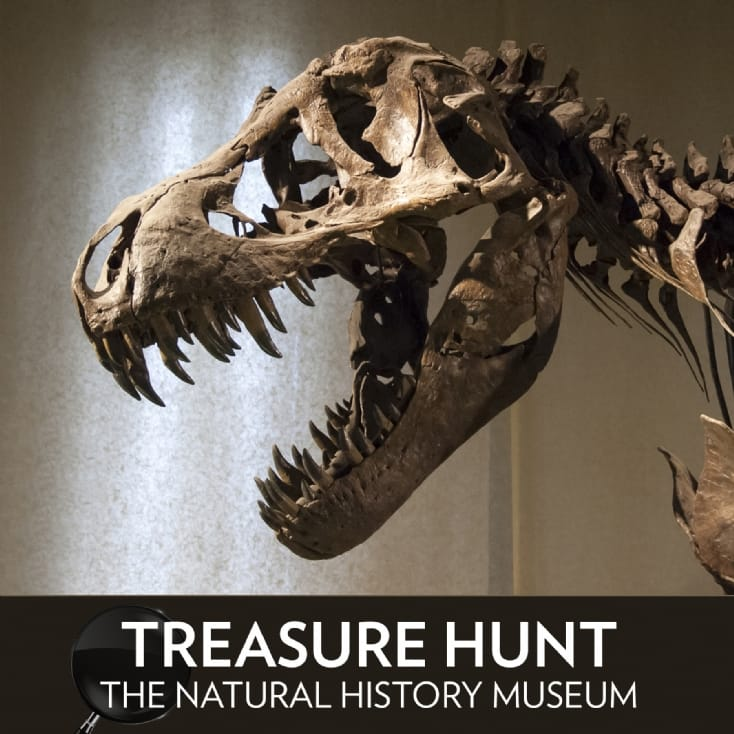 Treasure Hunt at The Natural History Museum