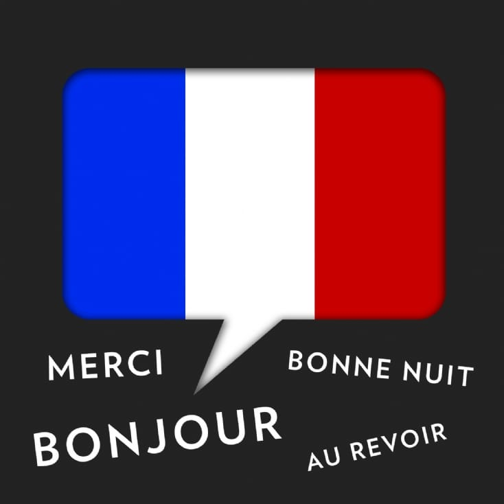 Online Conversational French Made Easy course for 1
