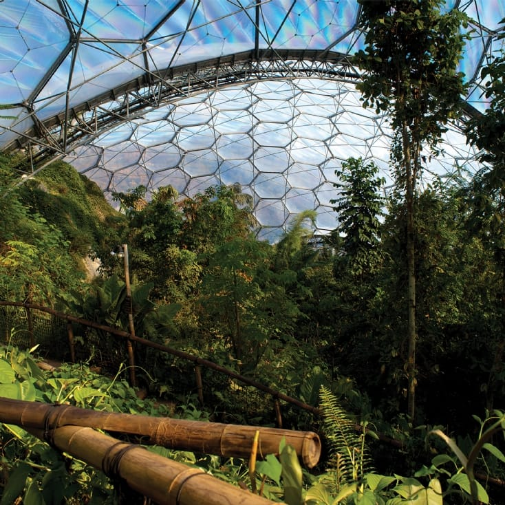 Eden Project Escape