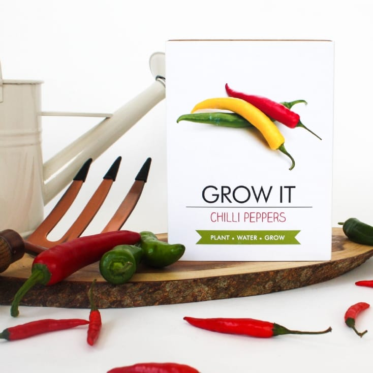 Grow Your Own Chillies Kit