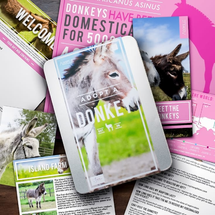 Adopt A Donkey Gift Pack