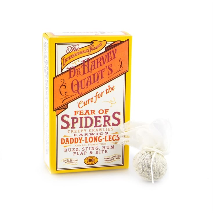 Cure For Fear Of Spiders