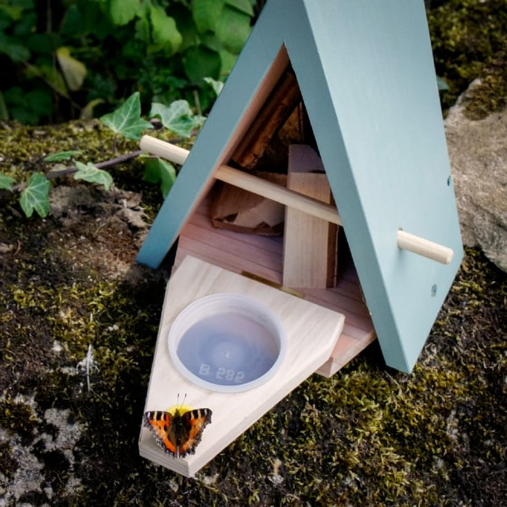 Butterfly Biome - Habitat and Feeder