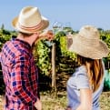 Thumbnail 4 - Vineyard Experience With Lunch For Two